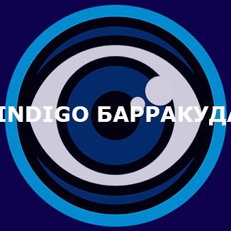 INDIGO Барракуда